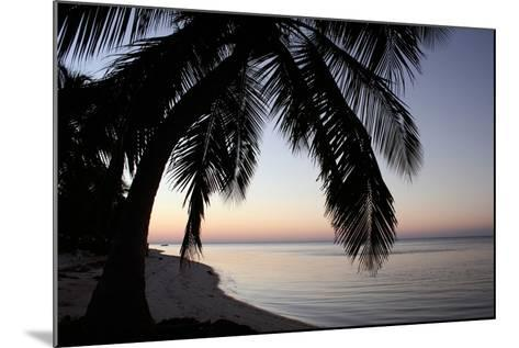 Palm Tree Sunset-Brent Anderson-Mounted Photographic Print