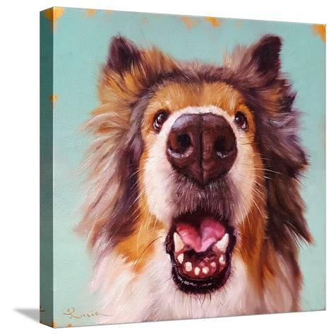 Follow Your Nose 9-Lucia Heffernan-Stretched Canvas Print