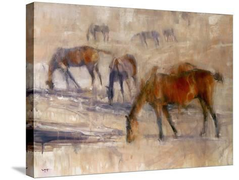 Kentucky Morning 3-Valtcho Tonov-Stretched Canvas Print