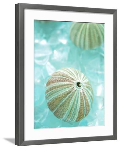 Seaglass 4-Alan Blaustein-Framed Art Print