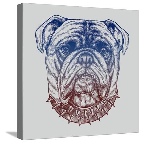 Gritty Bulldog-Rachel Caldwell-Stretched Canvas Print