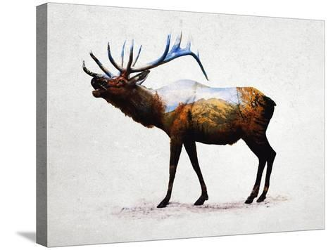 Rocky Mountain Elk-Davies Babies-Stretched Canvas Print