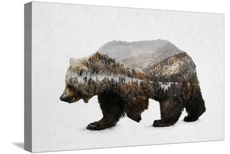 The Kodiak Brown Bear-Davies Babies-Stretched Canvas Print