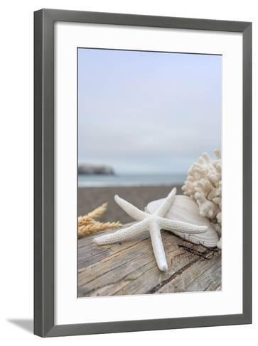 Crescent Beach Shells 14-Alan Blaustein-Framed Art Print