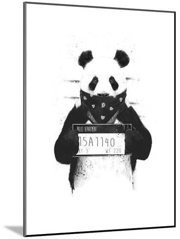 Bad Panda-Balazs Solti-Mounted Premium Giclee Print