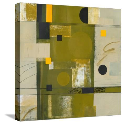 Shady Lane II-Deborah T. Colter-Stretched Canvas Print