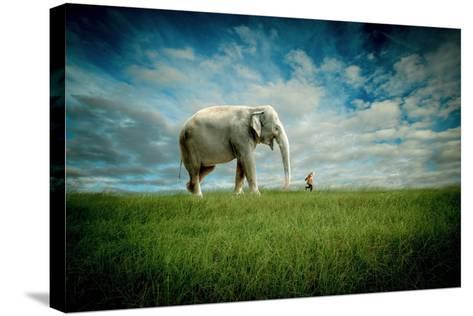 Elephant Follow Me-Jeff Madison-Stretched Canvas Print