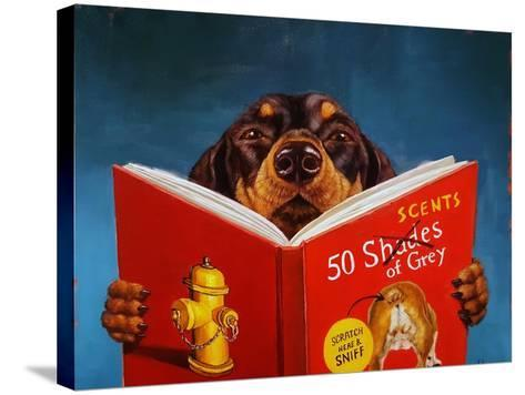 50 Scents of Grey-Lucia Heffernan-Stretched Canvas Print