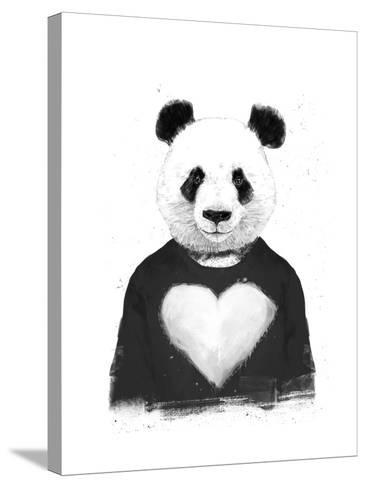 Lovely Panda-Balazs Solti-Stretched Canvas Print