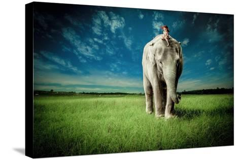 Elephant Carry Me-Jeff Madison-Stretched Canvas Print