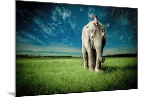 Elephant Carry Me-Jeff Madison-Mounted Art Print