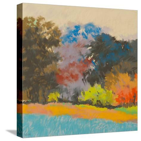 Fox Farms Woods 2-Mike Kelly-Stretched Canvas Print