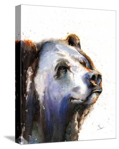 Bear Portrait-Eric Sweet-Stretched Canvas Print
