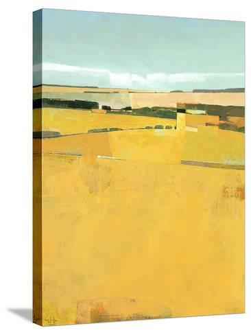 Fence Lines and Fields-Greg Hargreaves-Stretched Canvas Print