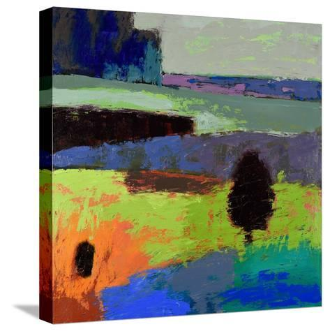 From What I Know-Jane Schmidt-Stretched Canvas Print