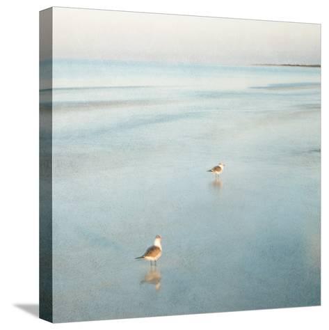 Two Birds on Beach-John Juracek-Stretched Canvas Print