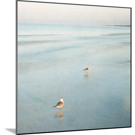 Two Birds on Beach-John Juracek-Mounted Photographic Print