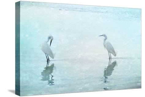 White Cranes-Hannes Cmarits-Stretched Canvas Print