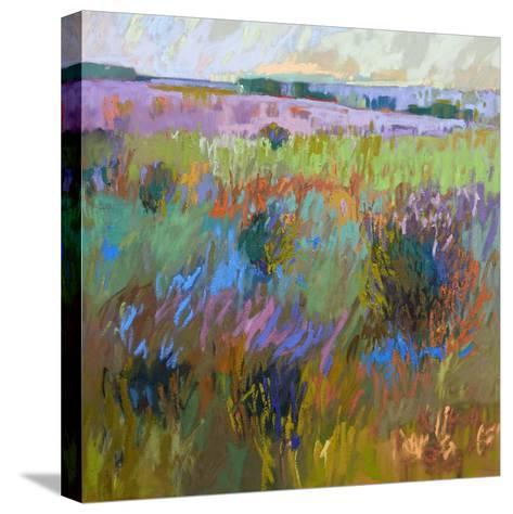 Beyond and Further-Jane Schmidt-Stretched Canvas Print
