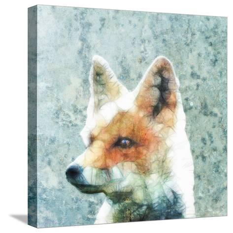 Abstract Fox-Ancello-Stretched Canvas Print