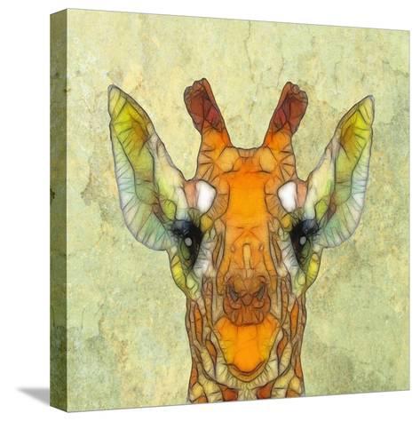 Abstract Giraffe Calf-Ancello-Stretched Canvas Print