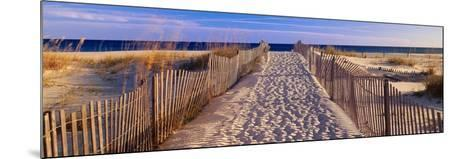 Pathway to the Beach-Joseph Sohm-Mounted Photographic Print