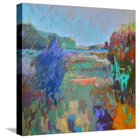 Color Field 45-Jane Schmidt-Stretched Canvas Print