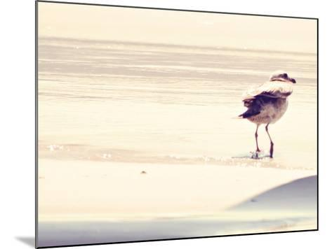 Bird at The Beach-Sylvia Coomes-Mounted Photographic Print