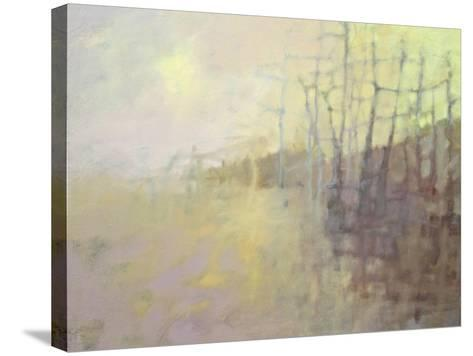 Sun's Warmth-Pam Hassler-Stretched Canvas Print