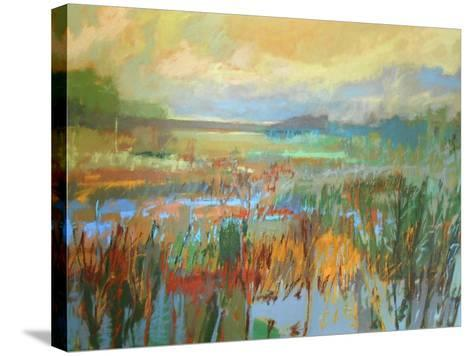 Marsh in May-Jane Schmidt-Stretched Canvas Print