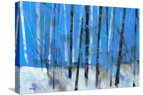 Birch and Black Ash Saplings-Paul Bailey-Stretched Canvas Print