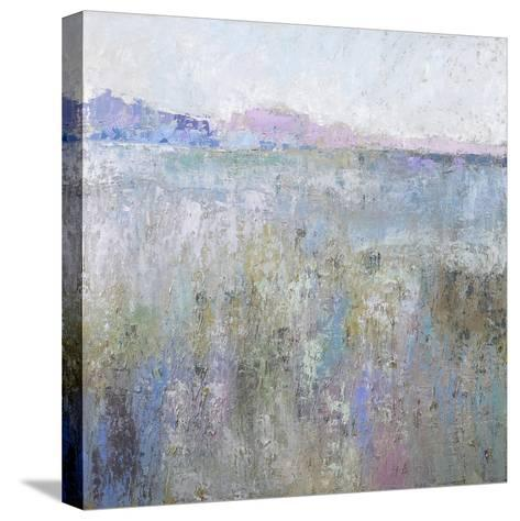Paysage Thirteen-Jane Schmidt-Stretched Canvas Print
