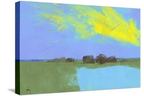 Decoy Pond-Paul Bailey-Stretched Canvas Print
