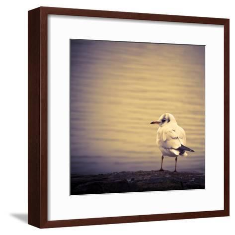 Are You Watching Me?-Joanna Pechmann-Framed Art Print