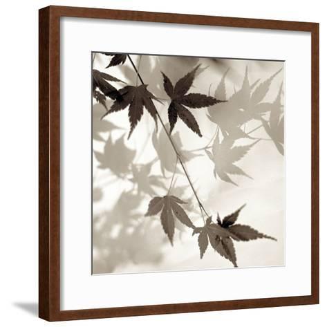 Florison #63-Alan Blaustein-Framed Art Print