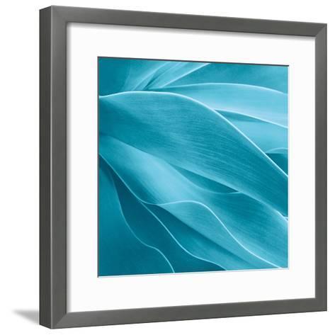 Succulent-Jan Bell-Framed Art Print