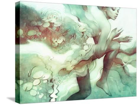 Flood-Anna Dittman-Stretched Canvas Print