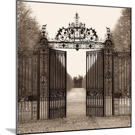 Hampton Gate-Alan Blaustein-Mounted Photographic Print