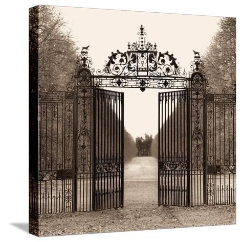 Hampton Gate-Alan Blaustein-Stretched Canvas Print