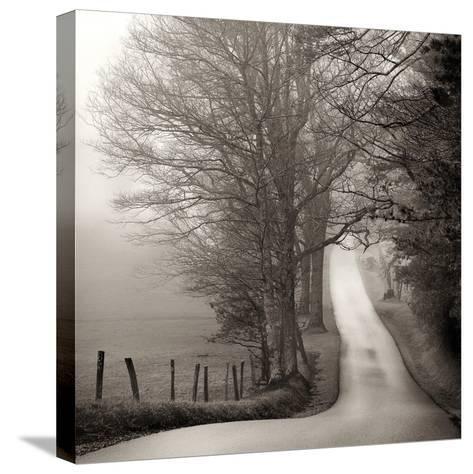 Cades Cove-Nicholas Bell-Stretched Canvas Print