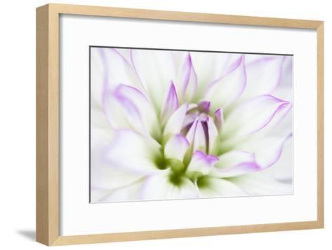 Dahlia-Dawn LeBlanc-Framed Art Print