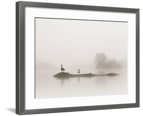 Melton Lake-Nicholas Bell-Framed Art Print