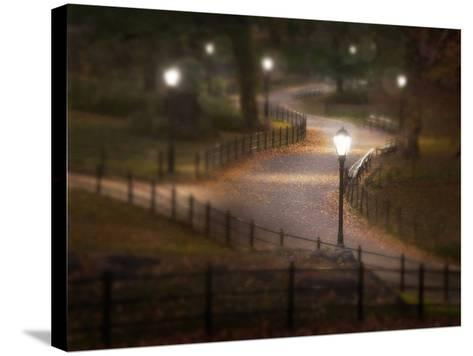Twilight Stroll-Natalie Mikaels-Stretched Canvas Print