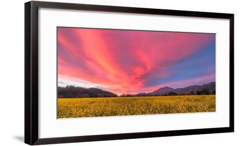 Spring Sunset Napa Valley-Elizabeth Carmel-Framed Art Print