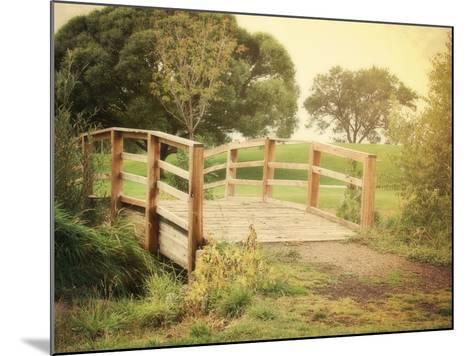 Sunday Stroll-Sylvia Coomes-Mounted Photographic Print