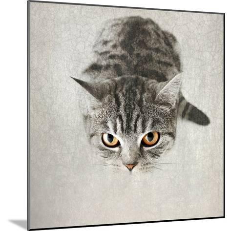 Hello Kitty-Nadia Attura-Mounted Photographic Print