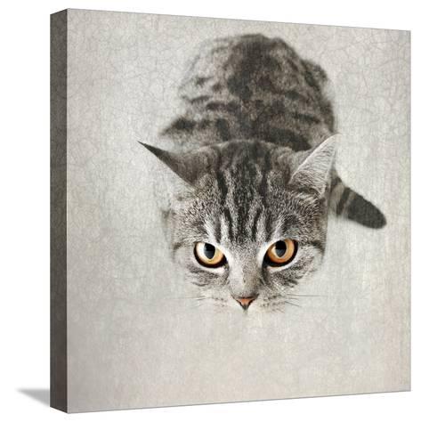 Hello Kitty-Nadia Attura-Stretched Canvas Print
