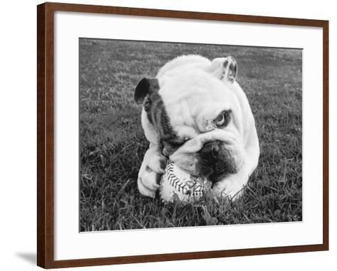 Obsess-Sharon Beals-Framed Art Print