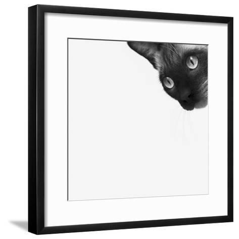 Be Brave-Jon Bertelli-Framed Art Print