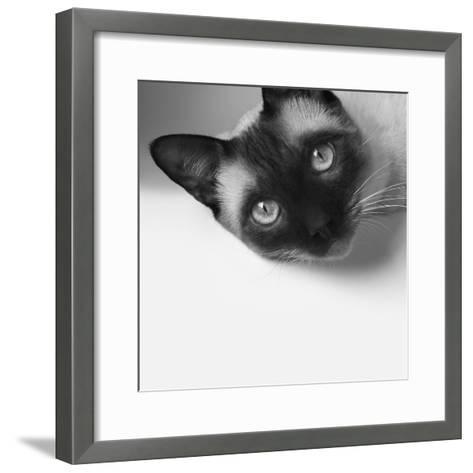 Hey!-Jon Bertelli-Framed Art Print
